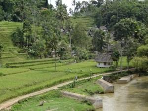 naga村