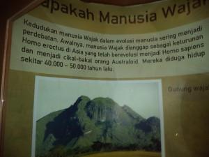 wajakの山
