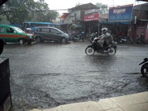 雨3 (2)syuku