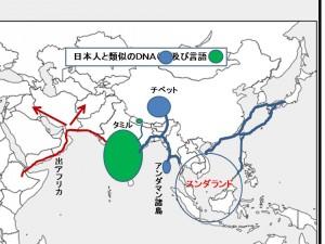 日本類似DNA言語116peg